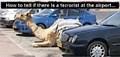 HOW DO YOU SPOT A TERRORIST IN AN AIRPORT CAR PARK??//. .jpg