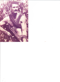 Barry Andrews profile photo
